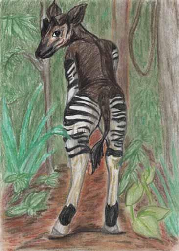 The new Bullyland Okapis Okapi_12