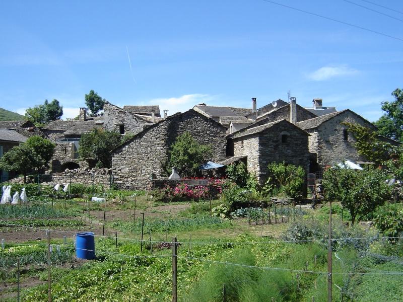 Petit hameau de Bardou dans le 34 05_dou10