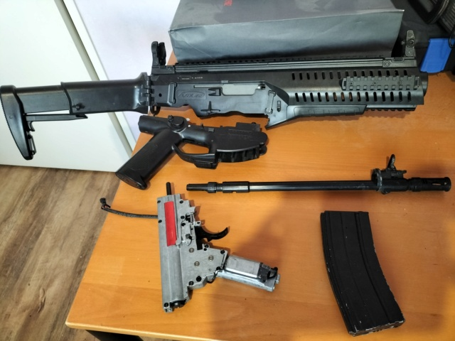Beretta ARX-160 Img20234