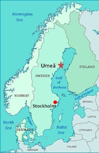 Umeå Pictur10