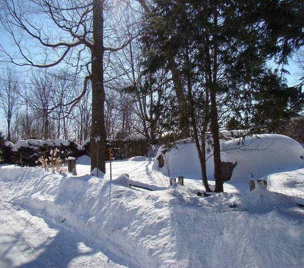 Bonne Mercredi Trail_11
