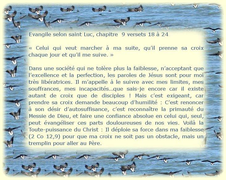"""Dimanche 23 juin 2013 12ème du Temps Ordinaire """"Pour vous qui suis-je?"""" Dimanc20"""
