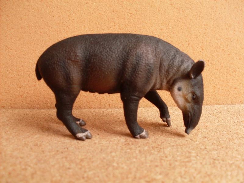 Baird's Tapir Baird_10