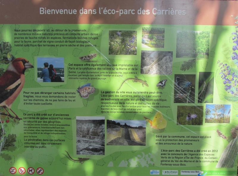 Parc des Carrières Img_2211