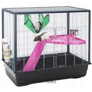 Est-ce que cette cage pourrait convenir ? 33191910