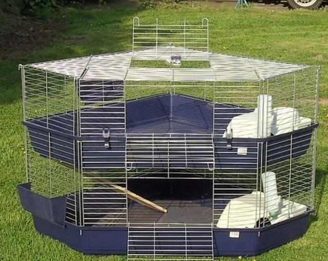Est-ce que cette cage pourrait convenir ? Sans_t10