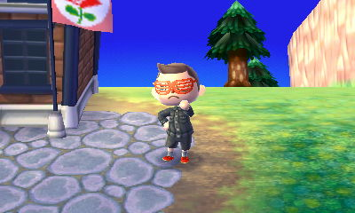 Animal Crossing New Leaf Hni_0014
