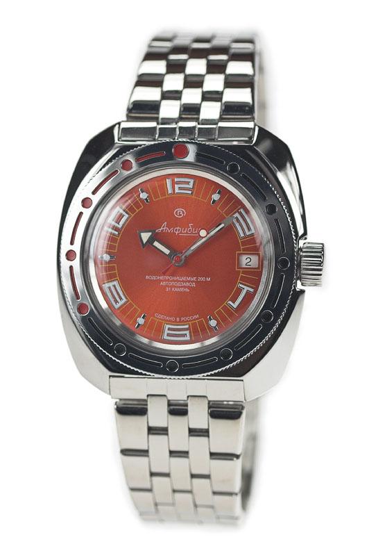 Recherche Vostok amphibia  71039510