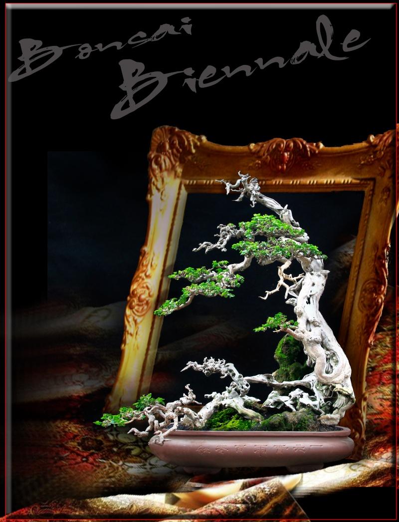 INTERNATIONAL BONSAI ART & CULTURE BIENNALE 2014 Creati11