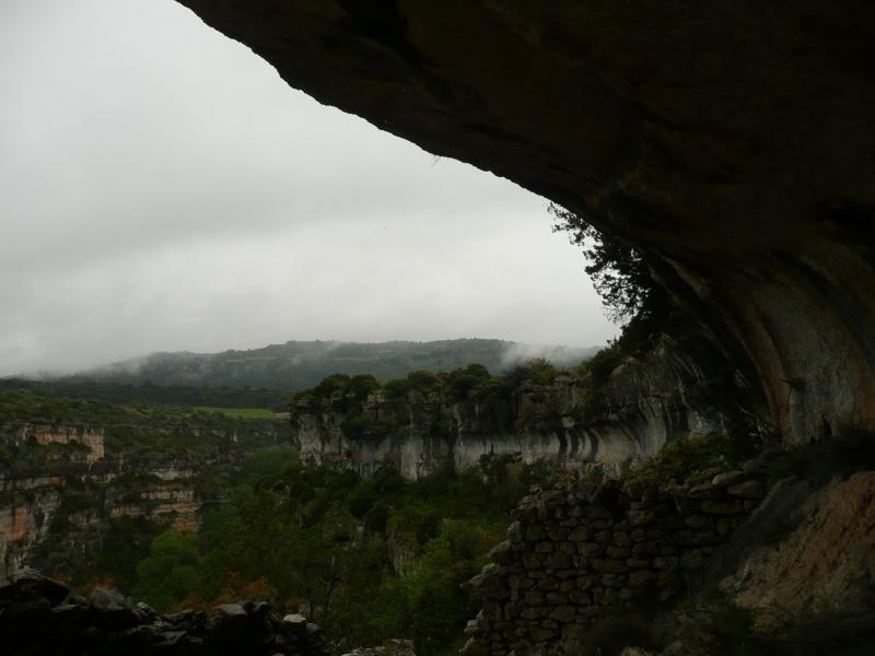conseils/ infos pour séjour à carcassonne/narbonne/leucate... P1190012