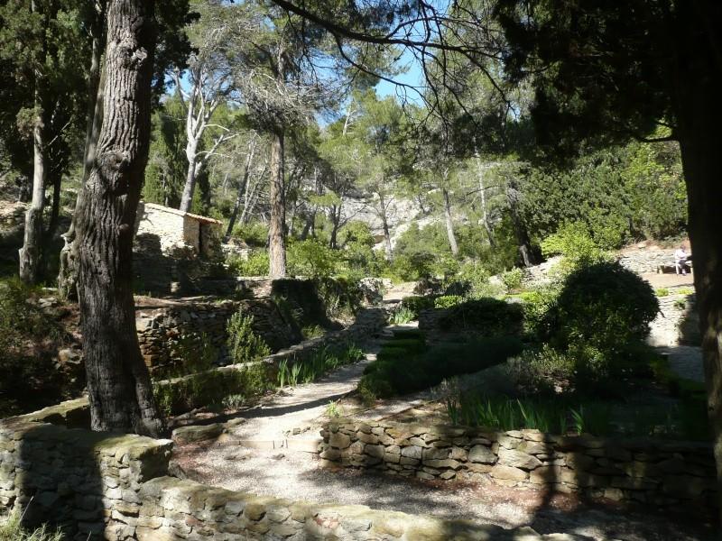 conseils/ infos pour séjour à carcassonne/narbonne/leucate... P1190112