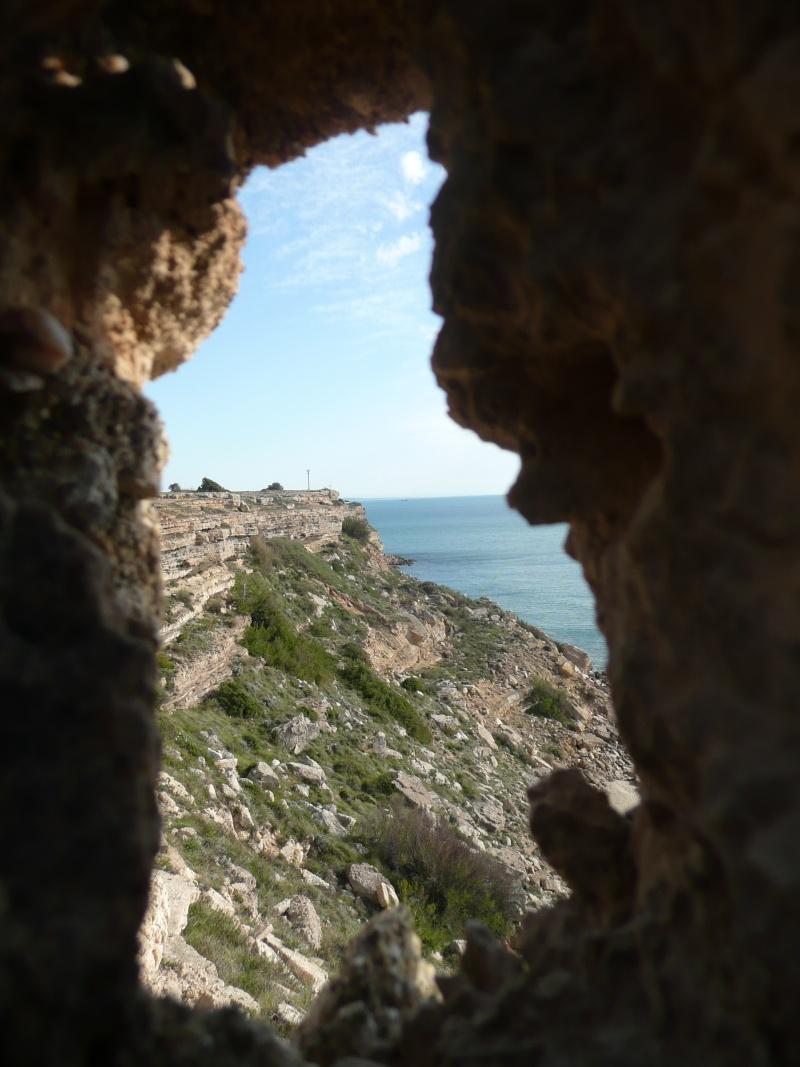 conseils/ infos pour séjour à carcassonne/narbonne/leucate... P1190114