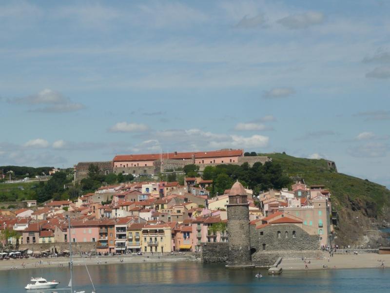 conseils/ infos pour séjour à carcassonne/narbonne/leucate... P1190211