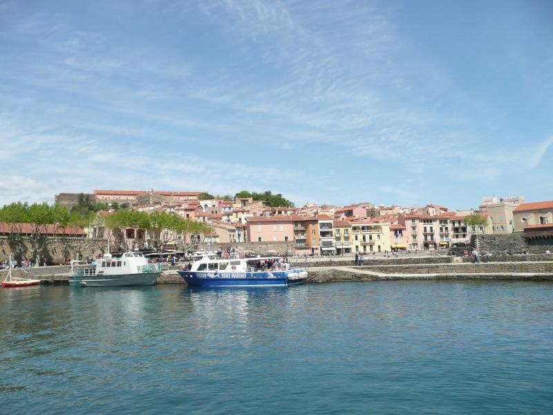 conseils/ infos pour séjour à carcassonne/narbonne/leucate... P1190212