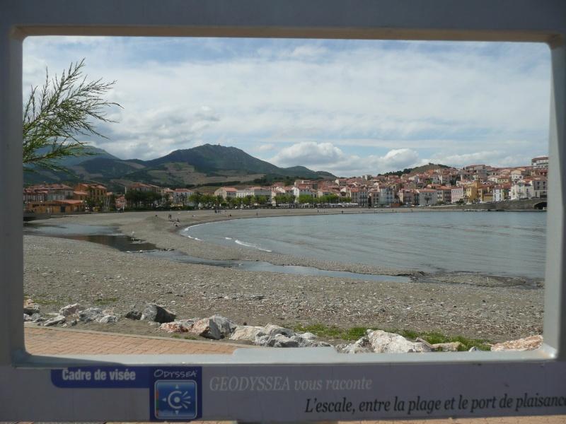 conseils/ infos pour séjour à carcassonne/narbonne/leucate... P1190311