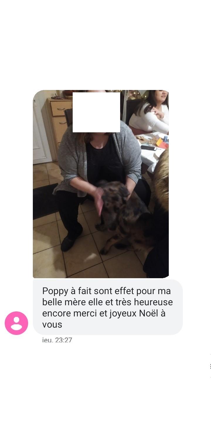 NOUVELLES DE POPPY Screen13