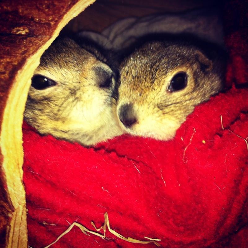 Léna et Alvin  Image18