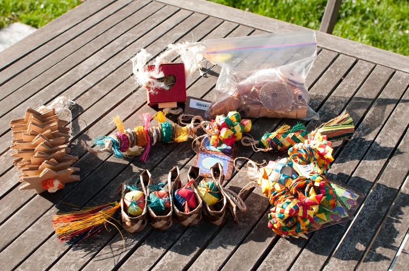 Jouets pour perruches et perroquet ROSIE Dsc_9720