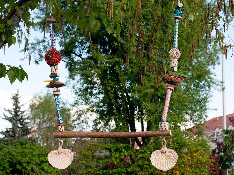Jouets pour perruches et perroquet ROSIE Dsc_9723