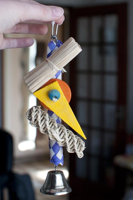 Jouets pour perruches et perroquet ROSIE Dsc_9725
