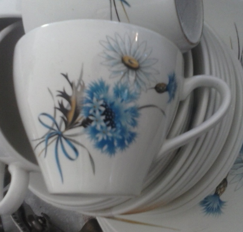 'Oakwood' plus 'Kelston Potteries' Daisy and blue cornflower no namer ~ Cam00714