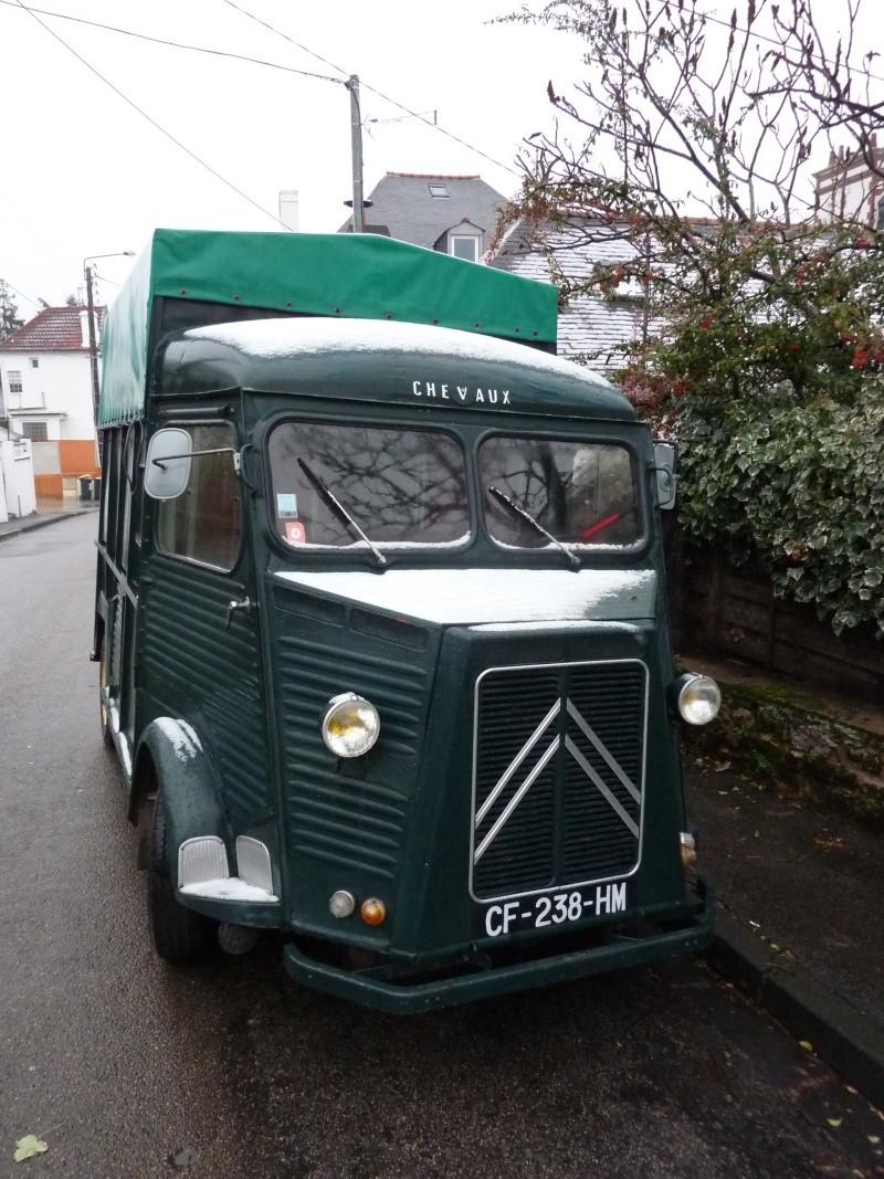 Présentation : 1954 transport de chevaux P1060710