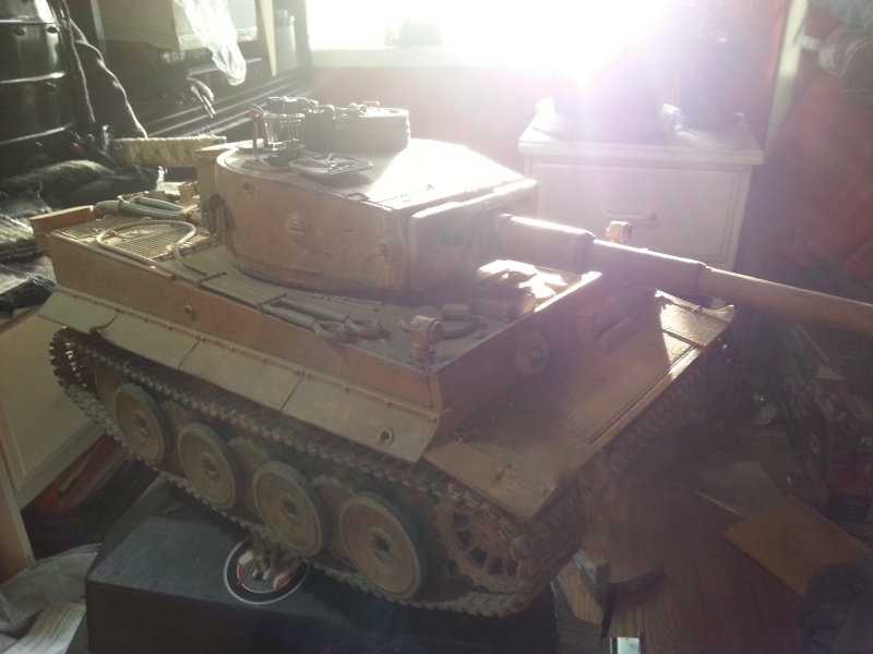 Strato's Tiger 20130511