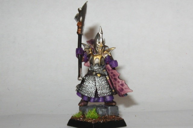 chaos - Assorted heroes from the Empire and Chaos Wastes - Page 3 Darkel10