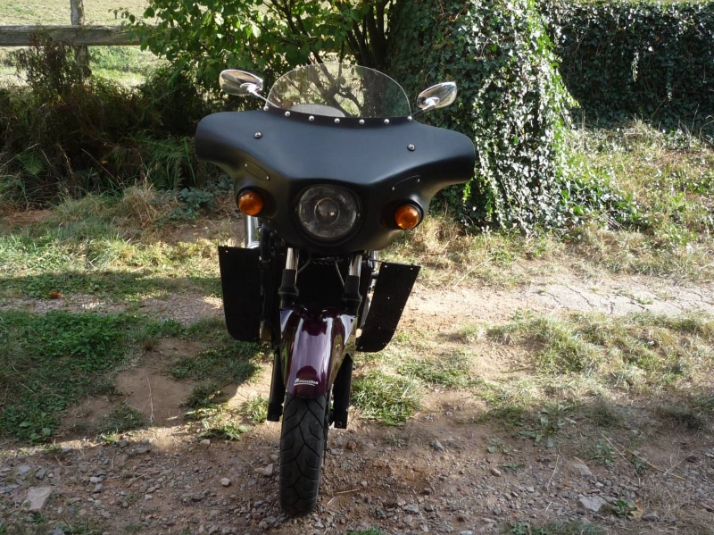 Africa Twin 650 : centrale clignotants P1010128