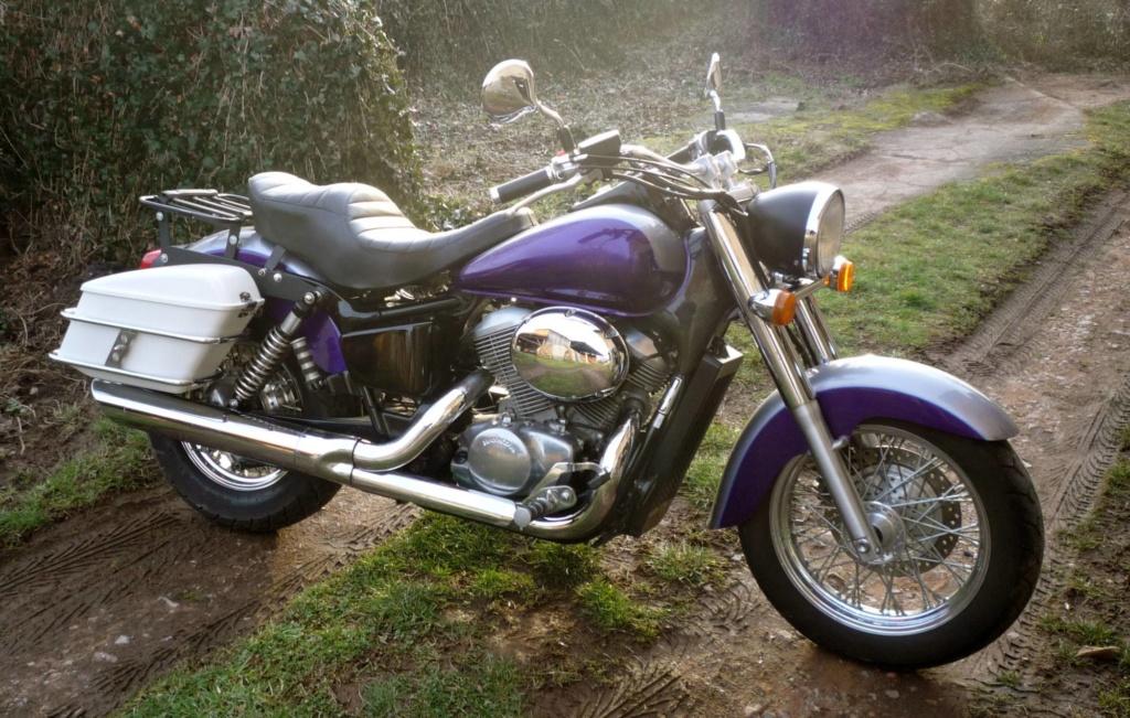 Shadow Ace 750 1999 : Nouvelle bête en transformation esthétique P1010137