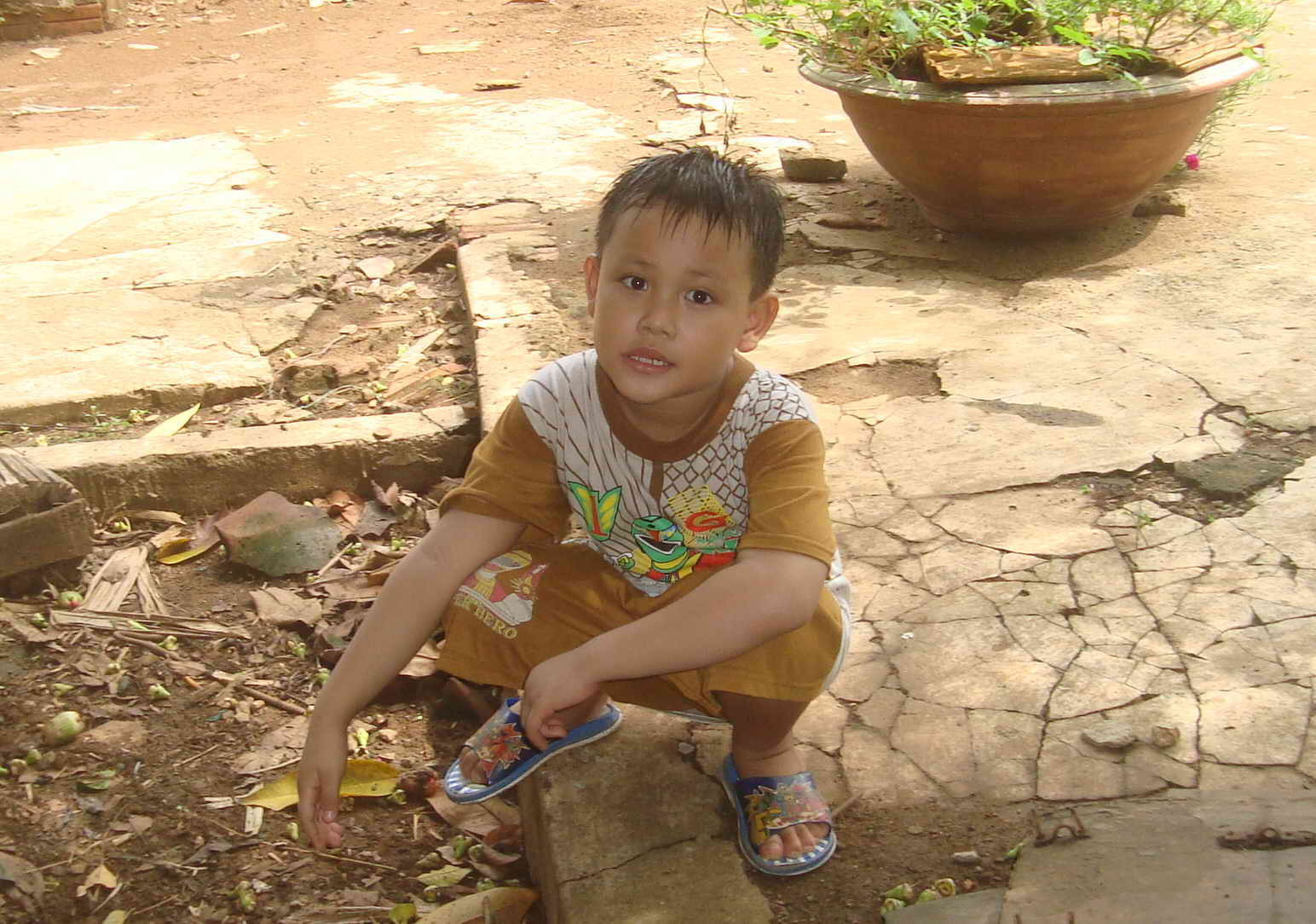 Truy tìm Phạm Quang Vũ sứt Vucon10