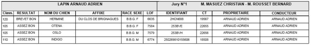 Les bbg en brevets - saison 2019/2020 Lapin510