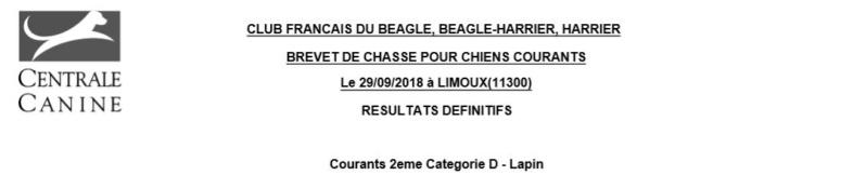 Les bbg en brevets saison 2018/2019 Lapin_12