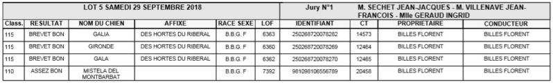 Les bbg en brevets saison 2018/2019 Lapin_13