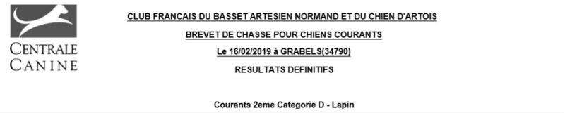Les bbg en brevets saison 2018/2019 Lapin_14