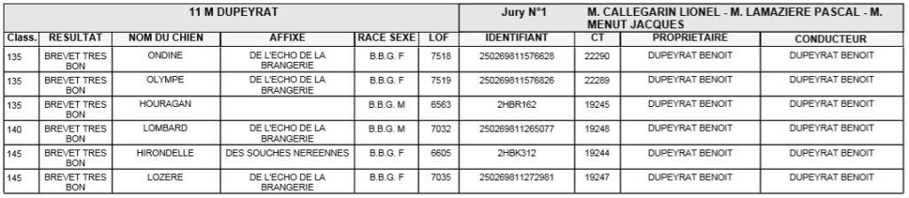 Les bbg en brevets - saison 2019/2020 Lievre14
