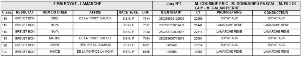 Les bbg en brevets - saison 2019/2020 Lievre16