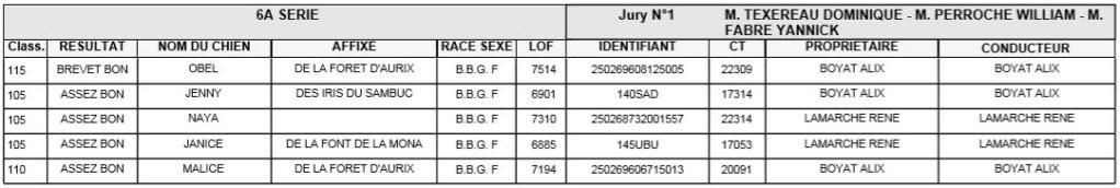 Les bbg en brevets - saison 2019/2020 Lievre19