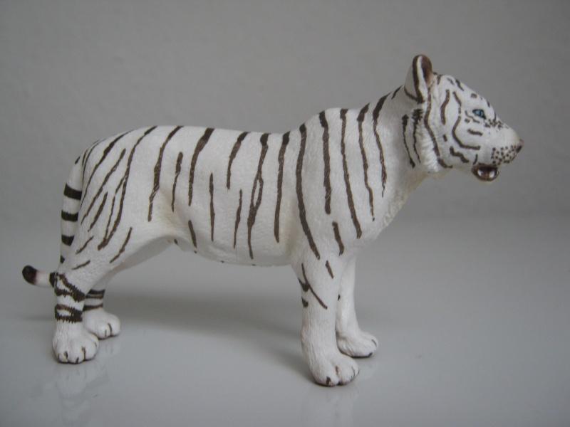 My new models of the last weeks Tigeri12