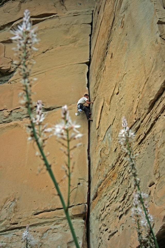 photos de grimpe en vrac Img_0310