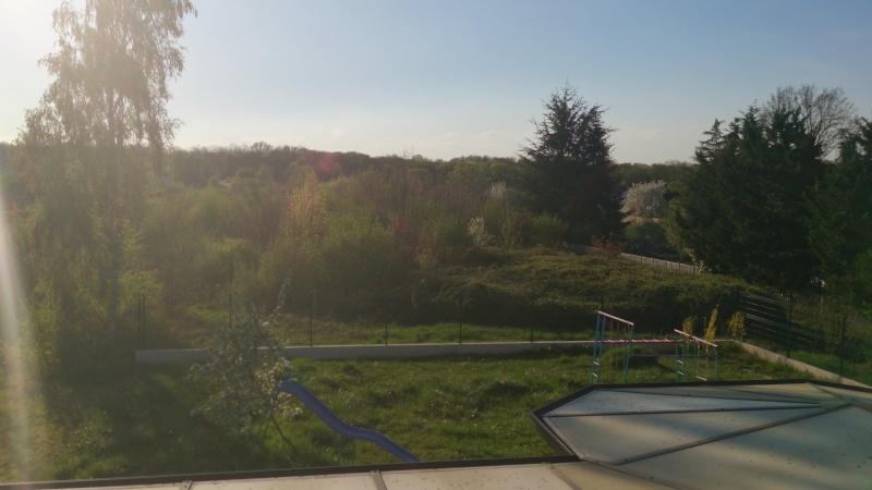 Ce qu'on voit depuis ta fenêtre Dsc_0010