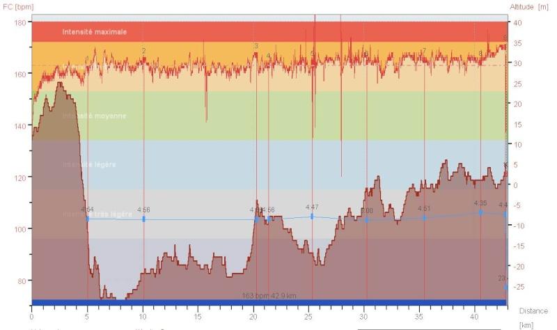 NoNo17 ---> Marathon de Londres - Page 2 Vlm_2010
