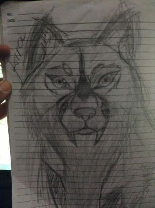 Random Drawings 48261010