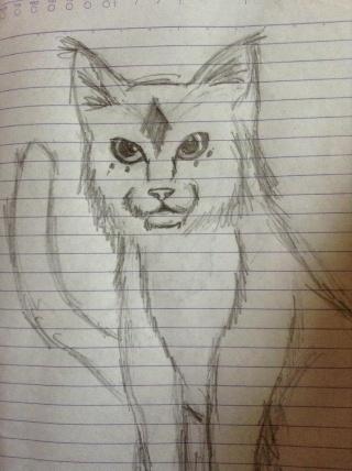 Random Drawings 93686110