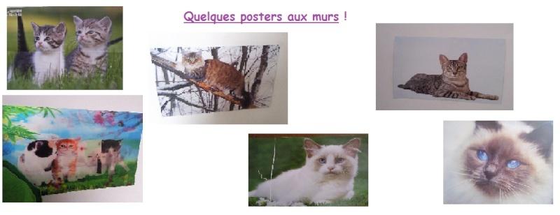 Collection d'objet sur le thème chat Poster10