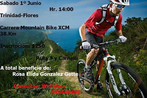 Mountain Bike XCM - Flores - 19868310