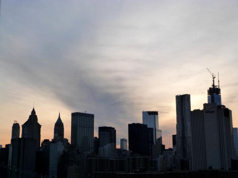 TR à New York du 12 au 18 avril - Page 2 P1010920
