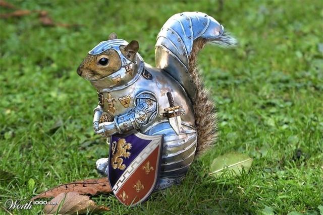 Le super écureuil, eqium, quitte le staff - Page 2 Image22