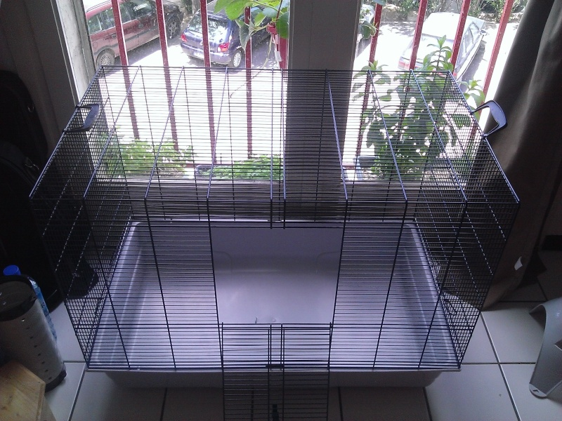 Vends Cage Freedy 2 Wp_20155