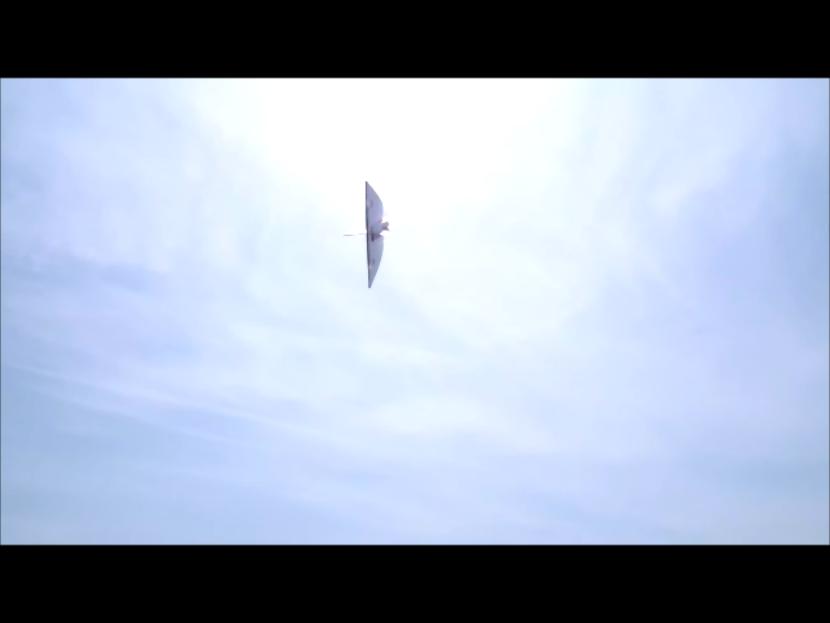 VTO free flight model - Page 4 Instan35